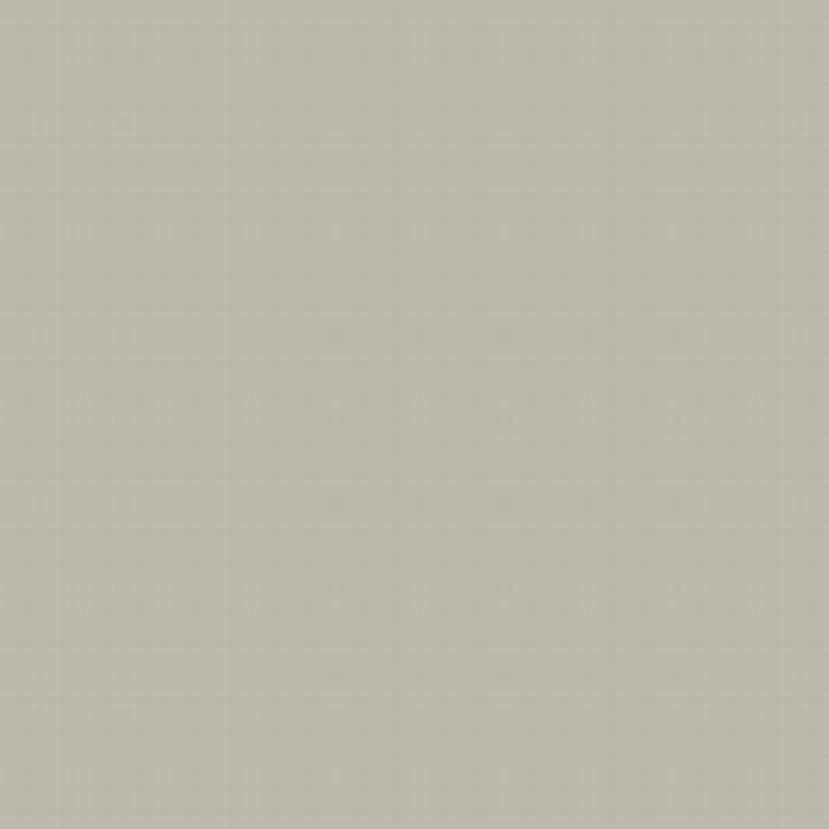 gray hex code